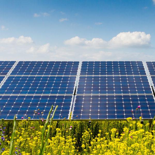 aurinkopaneelit